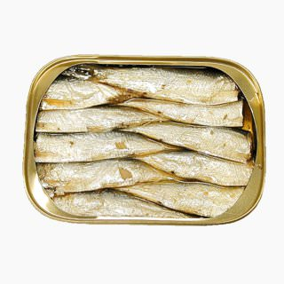 Japanese pilchard, Canned product (in oil)