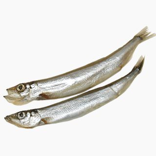 Atlantic capelin (semi-dried, baked)