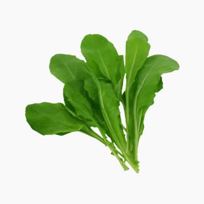 Rocket Salad Leaves Raw